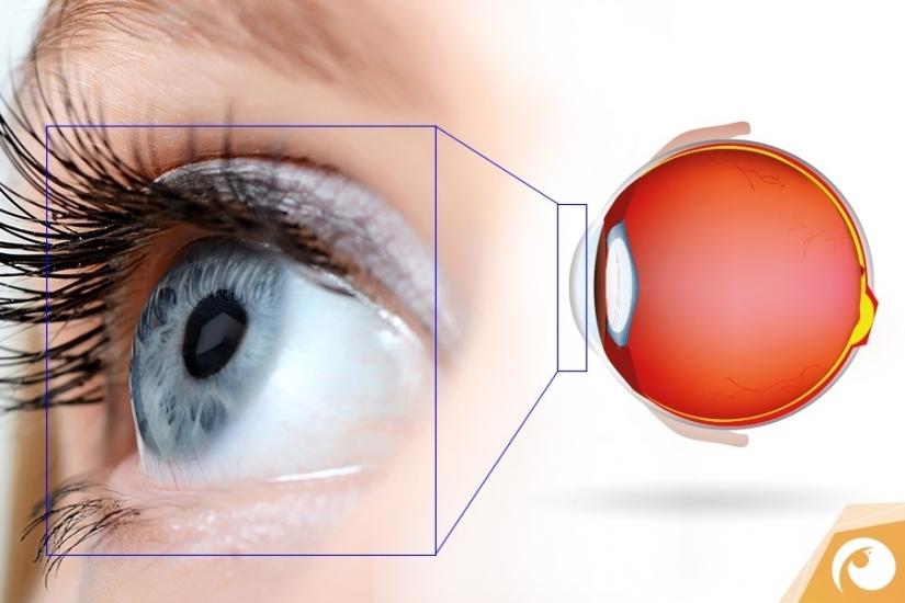 Trockenes Auge - Ursachen, Fakten & Tipps   Offensichtlich