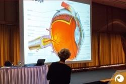Vortrag Augengesundheit von Dr. med. Verena Seiffert