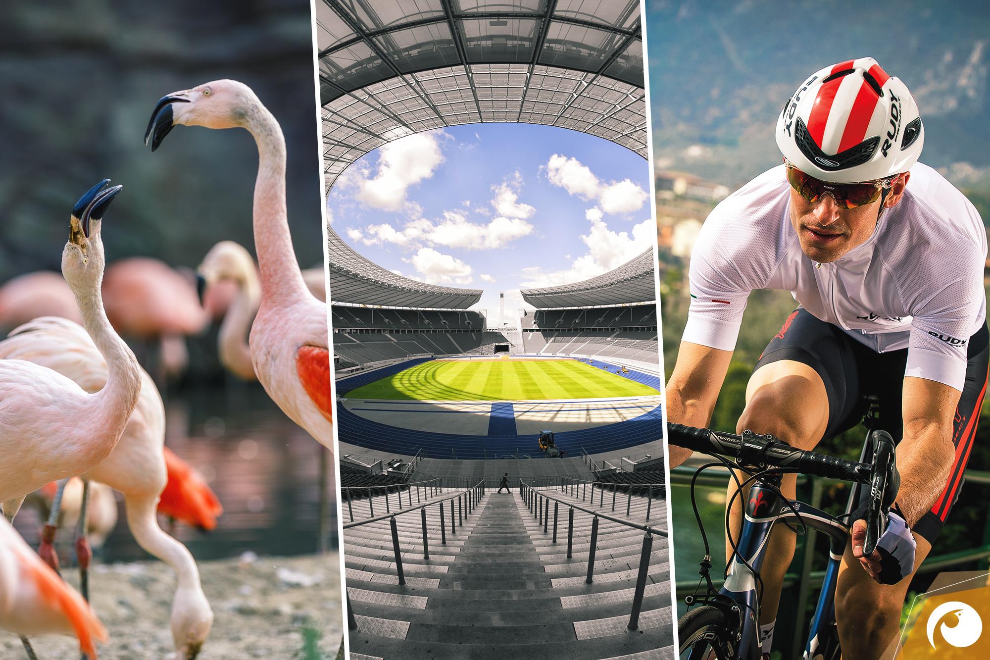Sport, Kunst und Genuss an diesem Wochenende in Berlin